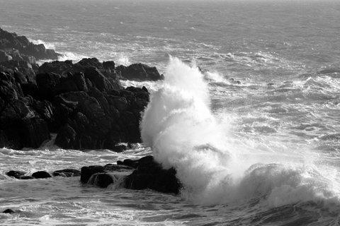 Photographies érotiques en noir et blanc